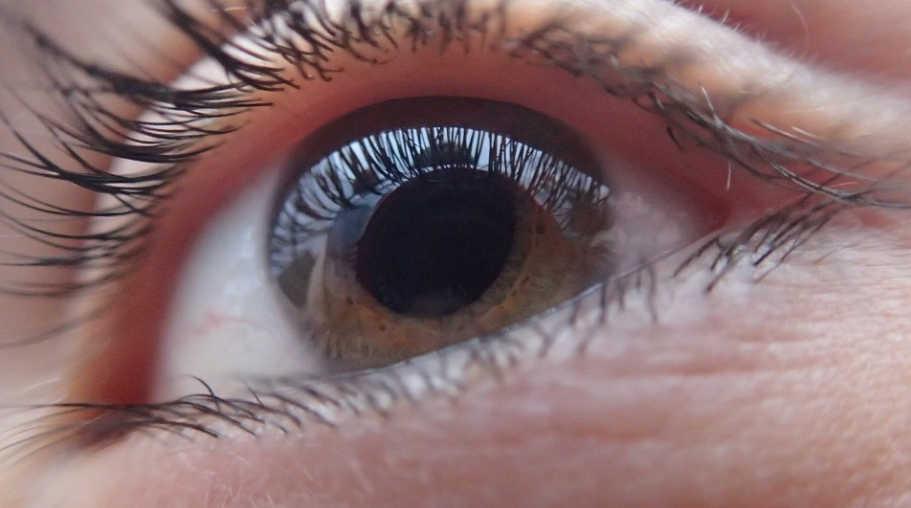 olho humano sem catarata